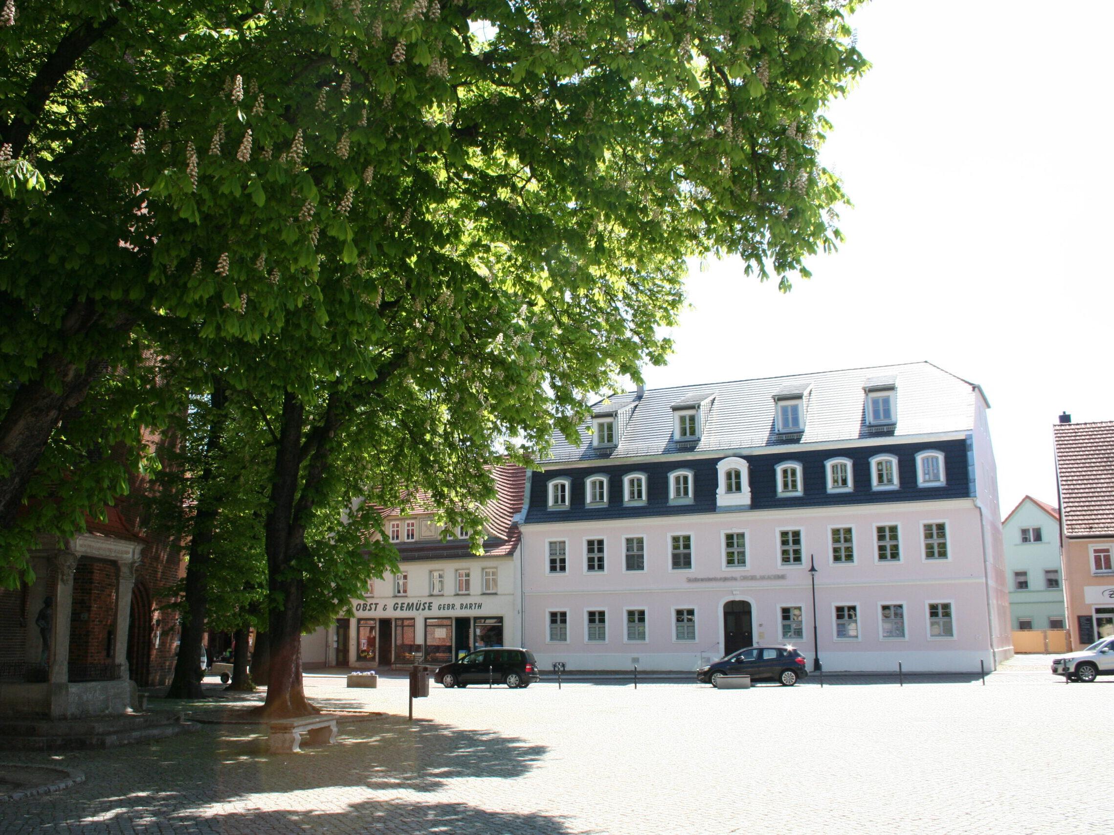 Seniorengerechte 1,5-Raum-Wohnung im Herzen der Kurstadt